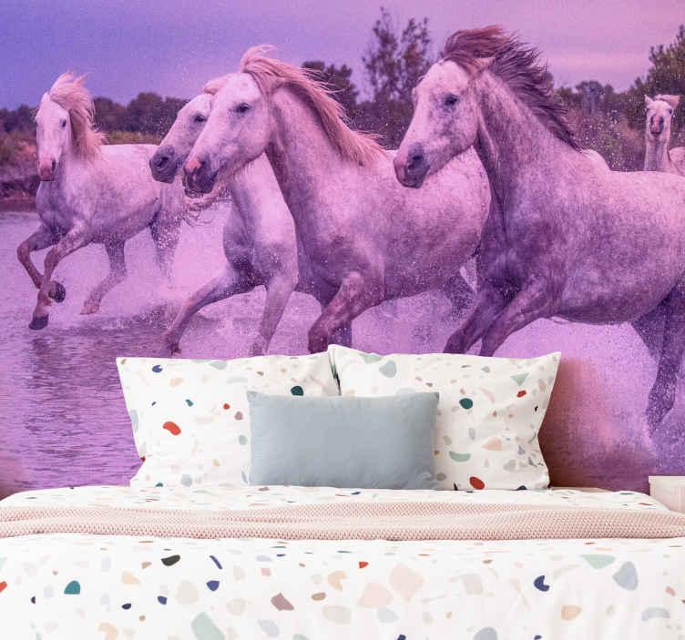 TenStickers. Běžící koně nástěnná tapeta. Zvířecí tapety na jezdecké téma vytištěné krásným růžovým uměleckým obrazem. Nástěnná tapeta je vytištěna na vysoce kvalitních podpěrách