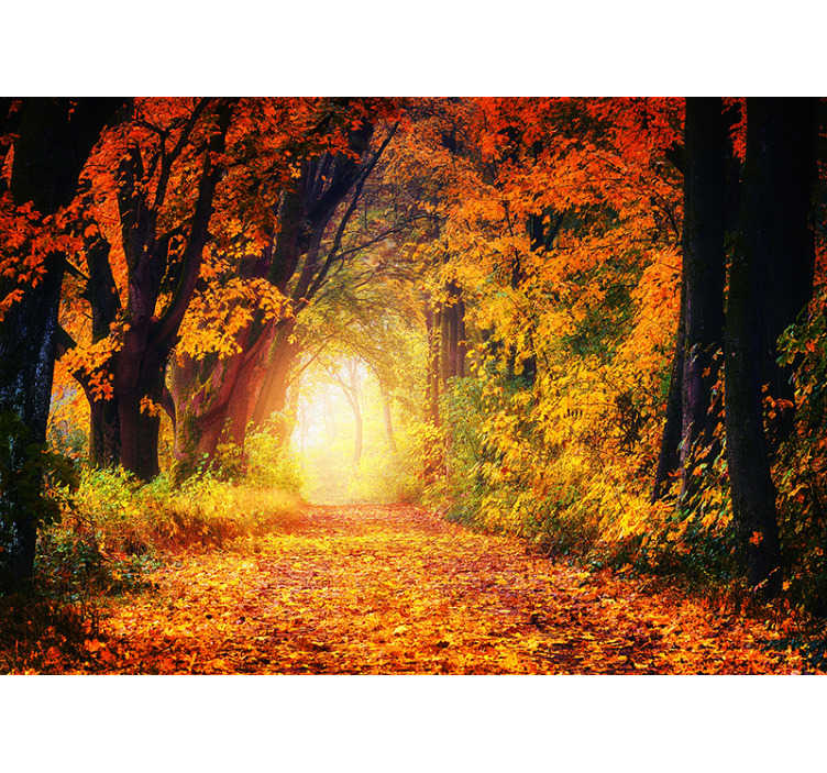 TenStickers. Autumnal path nature wall mural. Time to get cosy, get your cup of coffee and cuddle up under a blanket! This autumnal nature wall mural is the design you need to transform your home.