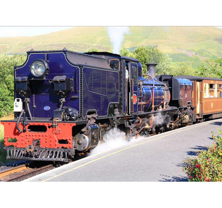 TenStickers. Snowdonia steam train mural wallpaper. Decorate with this beautiful train wall mural and you'll feel a passion for your newly decorated wall. Easy to apply, high definition images