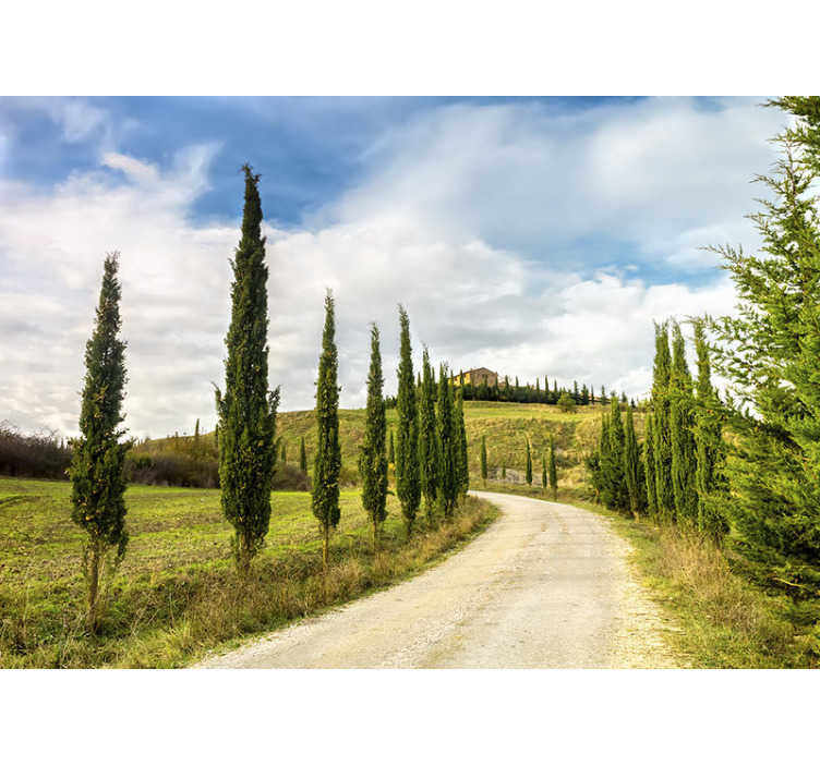 TenStickers. Tuscany Lounge Photo Wallpaper. This beautiful landscape photo wallpaper shows a scenery in Tuscany.  The bright colors will impress you and look great on your walls.