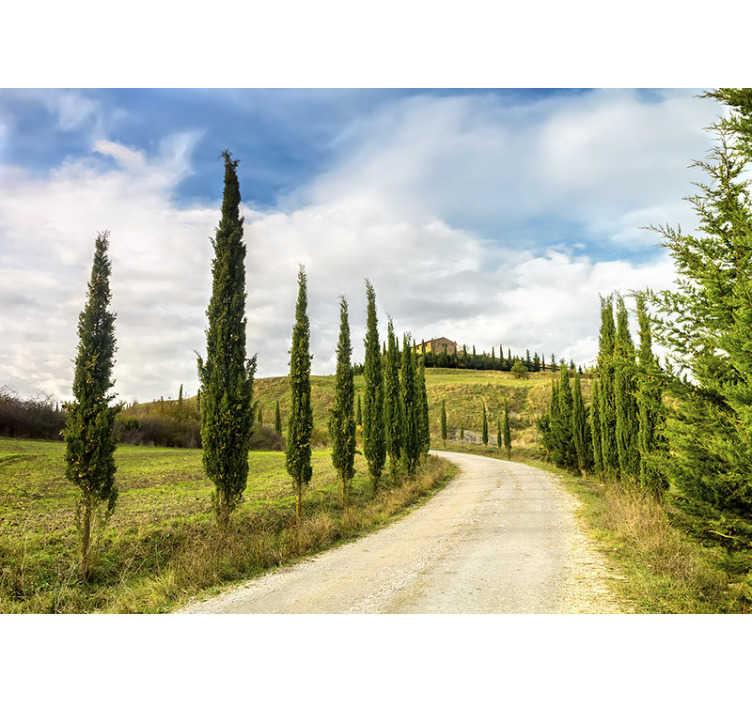 TenStickers. Toskana dnevni boravak foto pozadina. Ova prekrasna krajolika za fotografije prikazuje krajolik u toskani. Svijetle boje će vas impresionirati i izgledati sjajno na vašim zidovima.