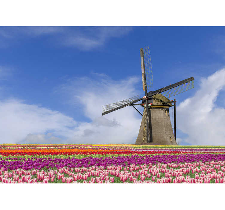 TenStickers. Papier peint champ de tulipes et moulin à vent. Cette stickers photo de chambre montre un beau champ de tulipes avec un moulin à vent en arrière plan les superbes couleurs de ce produit seront parfaites pour vous!