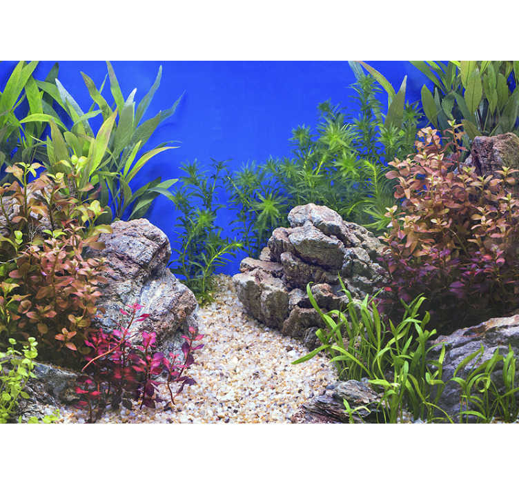 TenStickers. Underwater stones and plants landscape wall mural. Underwater beautiful detailed landscape wallpaper photo with clarity. Peacefull to look at to  feel comfortable and change your decoration!