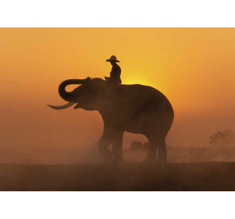 TenStickers. Asian Elephant at sunset mural wallpaper. Get a part of Thailand to your home! This beautiful lounge wall mural with an Asian elephant in front of the sunset is just what you need.