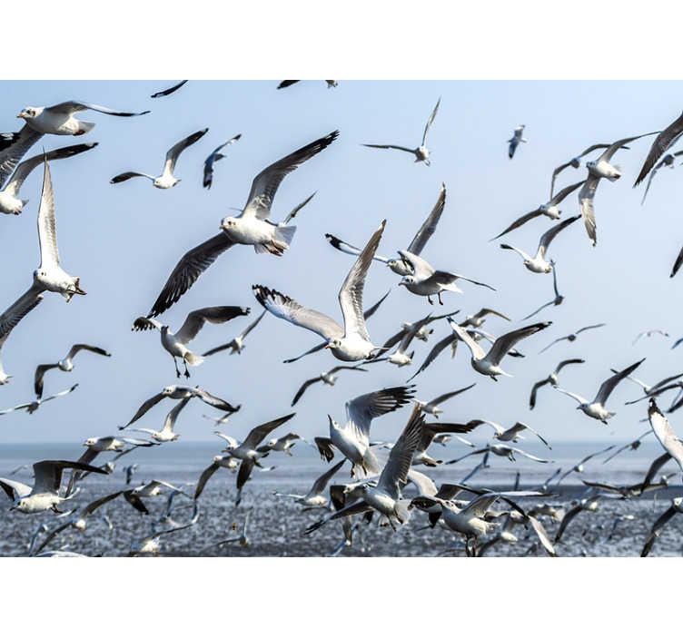 Tenstickers. Flygende måker veggmalerier. Dette dyreveggmaleriet kan plasseres i ethvert rom du ønsker. Føle tilstedeværelsen av disse måkene i hjemmet ditt! Du vil elske dette