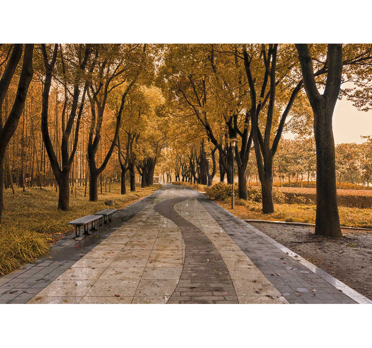 TenStickers. Road in autumn Forest Wall Mural. Bring the most beautiful of all seasons to your own home! This landscape wall mural shows a rode surrounded by trees in autumn!