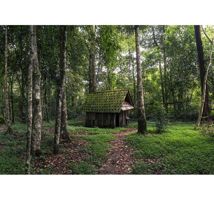 TenStickers. Huis in het midden van bos foto wallmural. Dit bos fotobehang is speciaal voor al onze bosliefhebbers! Hiermee kunt u zich voorstellen dat u zich in uw favoriete omgeving kunt verplaatsen.