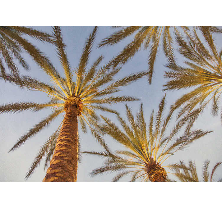 TenStickers. Palm tree and blue sky landscape wall mural. Tropical beach with palm tree landscape wall mural design is a one stop for your home decoration! Extremely long-lasting material.