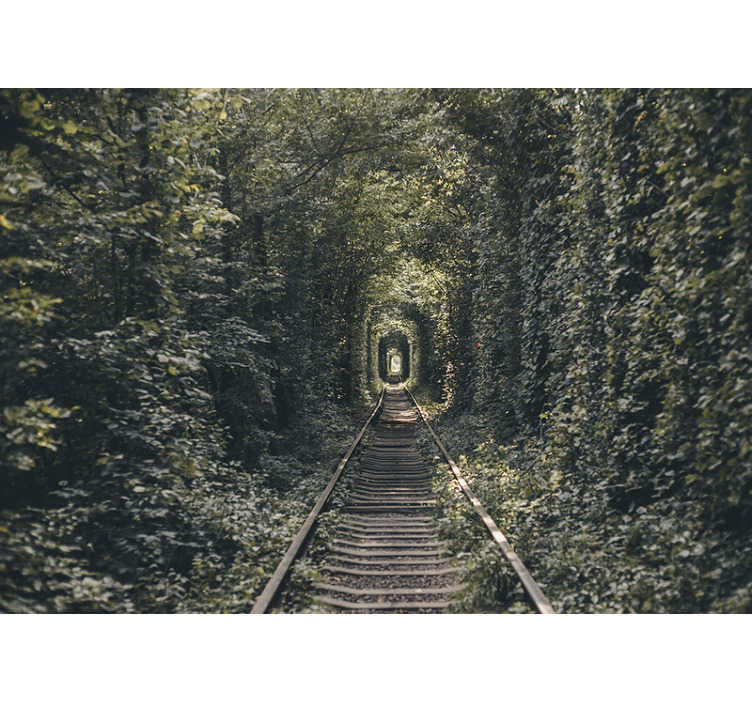 TenStickers. Railway tunnel of trees forest photo wallpaper. Mystical and exciting: This forest photo wallpaper has it all. The wall mural is perfect for living rooms and bedrooms. What are you waiting for?