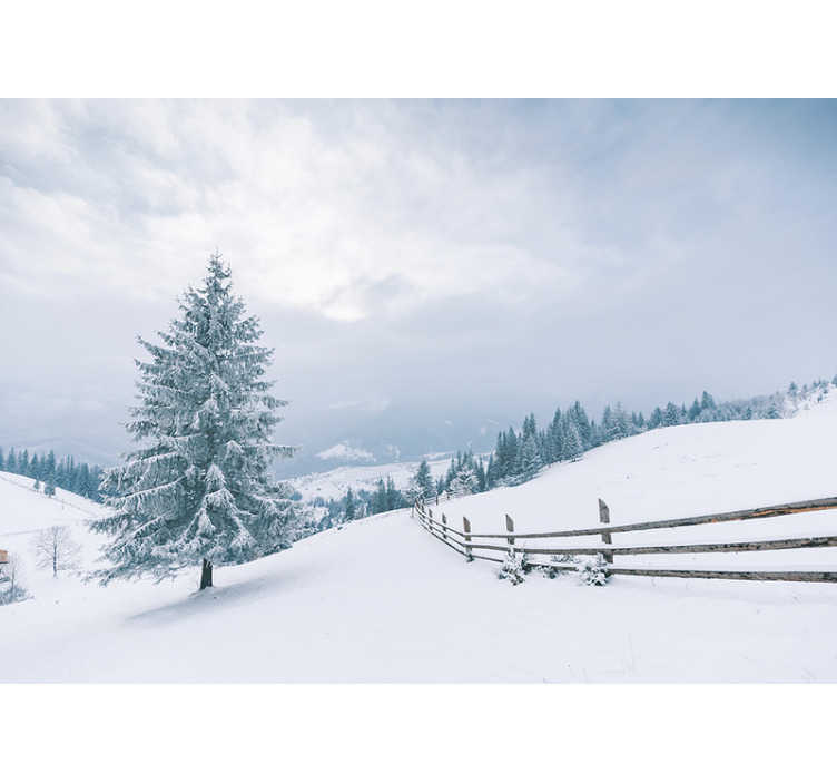 TenStickers. Winter Tree Forest mural. Do you like winter, and is this the most favorite season? Then we have this beautiful Winter Tree photo wallpaper with snow for you!
