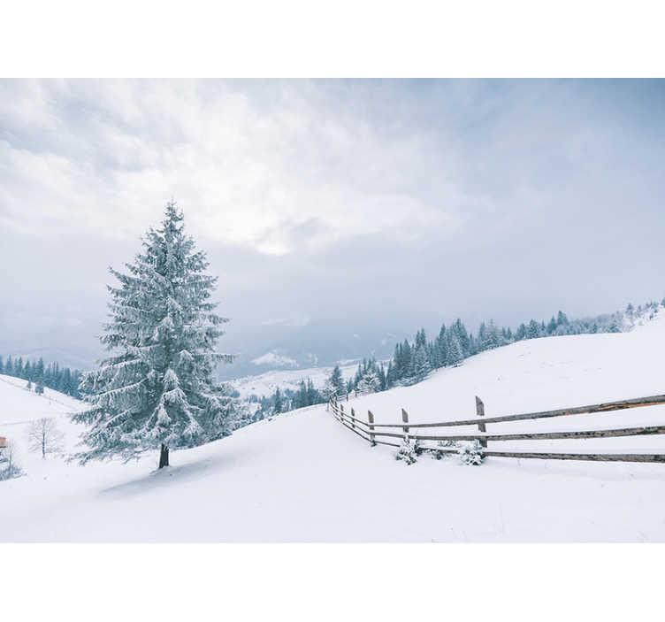 TenStickers. Winterbaum Wald Natur Tapete. Mögen Sie den Winter und ist dies die beliebteste Jahreszeit? Dann haben wir diese schöne Winterbaum Fototapete mit Schnee für Sie!