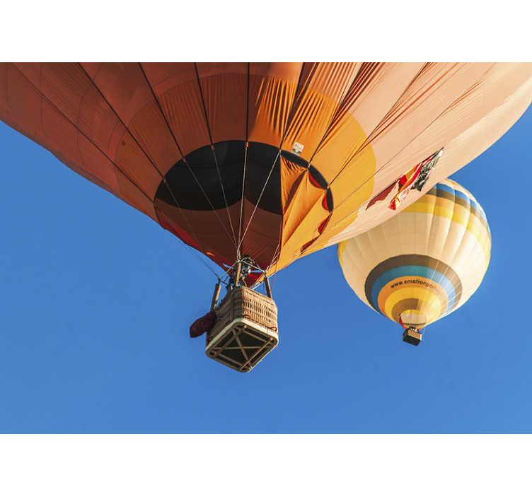 TENSTICKERS. ポンテ・ソル風船風景壁壁画. この空の壁の壁画では、ポルトガルの美しい風景、ポンテソルの上にある熱気球を飛ぶことができます。高画質画像!