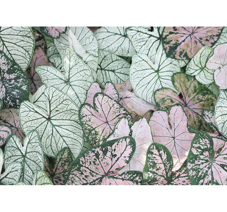 TenStickers. White and pink tree leaves wall mural. A nice representation of a leaf wall mural on which the carved trees are depicted with a finish of some green leaves that always depict a lot of life!