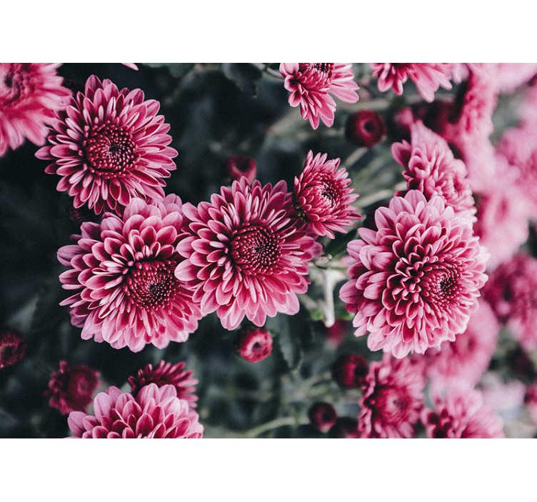TenStickers. 아름다운 분홍색 꽃 벽화 벽지. 방에 분홍색 꽃 이이 사진 벽지를 추가하고 벽에 꽃 무늬를 만듭니다. 특히 우리의 꽃 애호가를 위해!