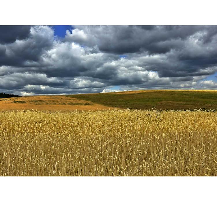 TenStickers. Natur Fototapete Brandenburg. Voller Überraschungen und Schönheit kann die Region Brandenburg Ihre neue Lounge-Tapete sein. Hochwertiges Bild mit realistischer Landschaft.
