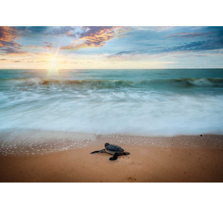 TenStickers. Turtle on the coast landscape wall mural. High quality sea wall mural with the turtle in front of the water standing happily on the shore. Best image with the matte finishing!