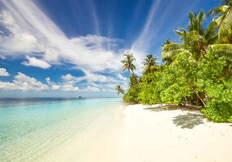 TenStickers. Papier peint photo Plage paradisiaque. Apportez cette vue à couper le souffle dans votre maison avec cette photo murale d'une plage paradisiaque. Elle est facile à appliquer et de haute qualité.