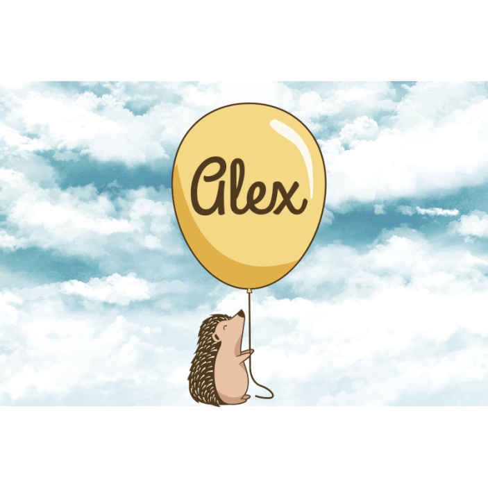 TenStickers. Porcupine with balloon and name Wall Murals for Bedrooms. Large wall mural design of a large cloud with a porcupine holding a customized name air balloon. It is easy to apply and of high quality material.