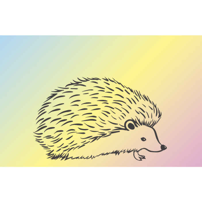 TenStickers. Porcupine drawn in lines  wall mural. Decorative porcupine drawing photo mural for home and other space. It is easy to apply, durable and of high quality material.