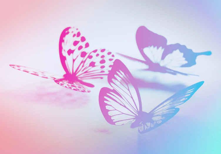 Tenstickers. Kaksiväriset perhoset valokuvatapetti eläimestä. Lasten perhonen fantasia tapetti kuvalla täydelliseen koristeelliseen lisäykseen huoneeseen. Värikäs ja luova makuuhuoneen tapetti kuvalla tytöille.