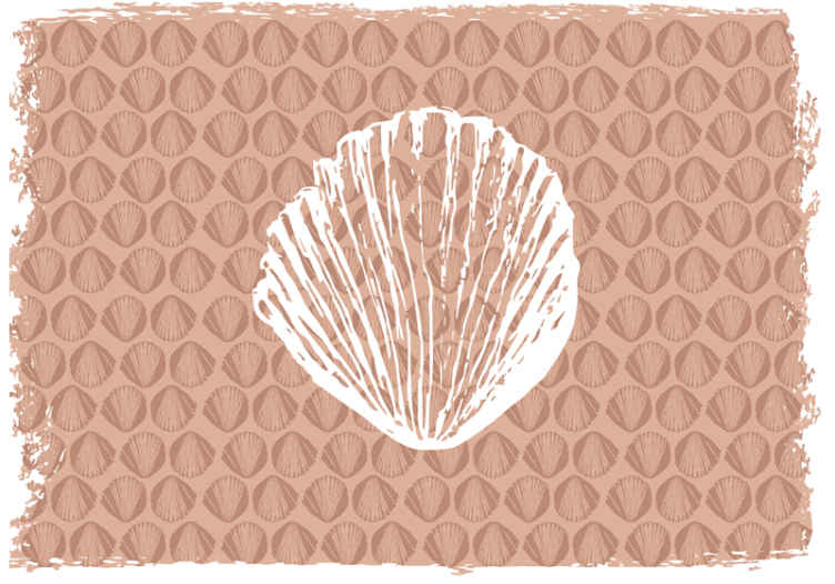 TenStickers. Retro Seashell Pattern beige animal murals. Decorative beige wall mural with seashell patterned prints. It is suitable for any space in a house and easy to apply. Original and durable.