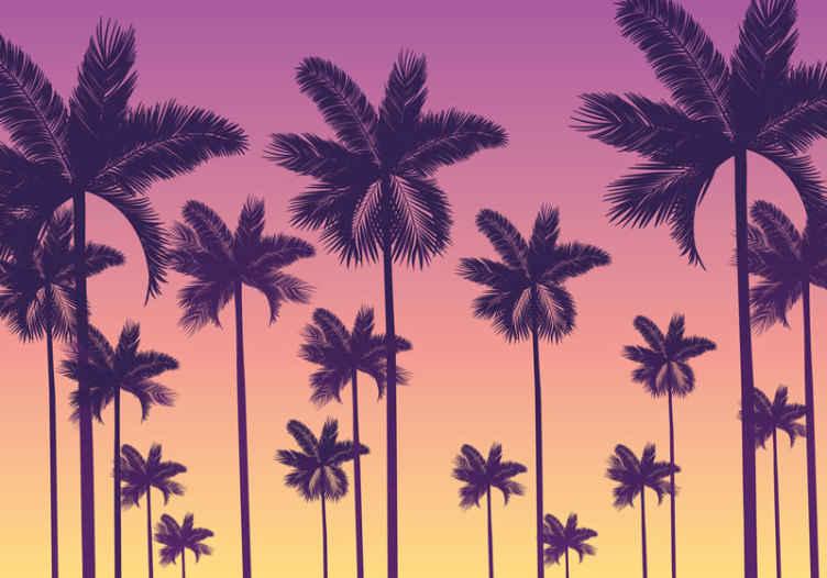 Tenstickers. Fototapeta západ slnka palmy. Dodajte svojmu domovu punc vinobrania s našou originálnou tapetou so dizajnom západu slnka. Dizajn sa skladá z rôznych dlaní s.