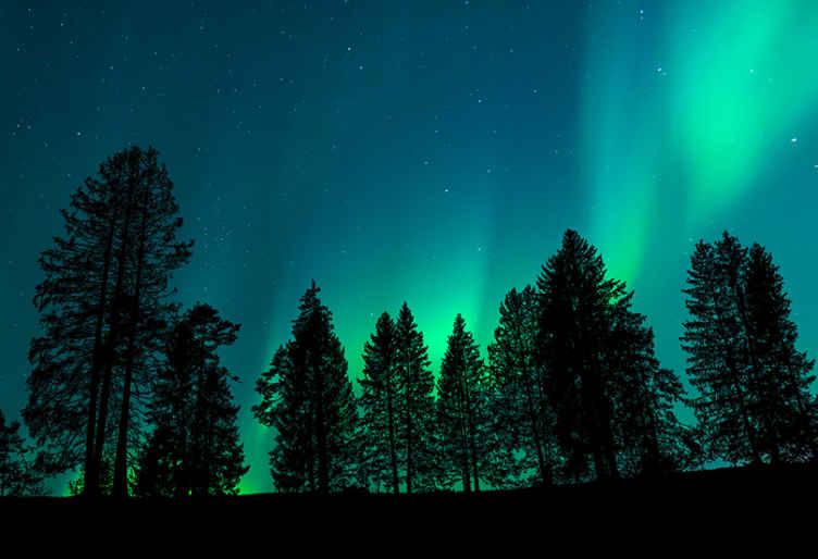 Tenstickers. Revontulet puiden yli maisema valokuvatapetti. Tämä pohjoisen valon tapetti kuvalla näyttää upean maisemanäkymän valoista, joka muistuttaa meitä kaikkia maailmamme muista maista. Osta nyt!