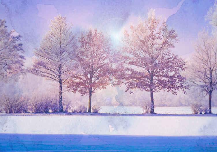 TenStickers. Fotomurais paisagistícos árvores congeladas com lago. fotomural vinílico de parede com ilustração de uma paisagem de árvores congeladas com um lindo lago que vai dar uma sensação de paz e tranquilidade ao local.