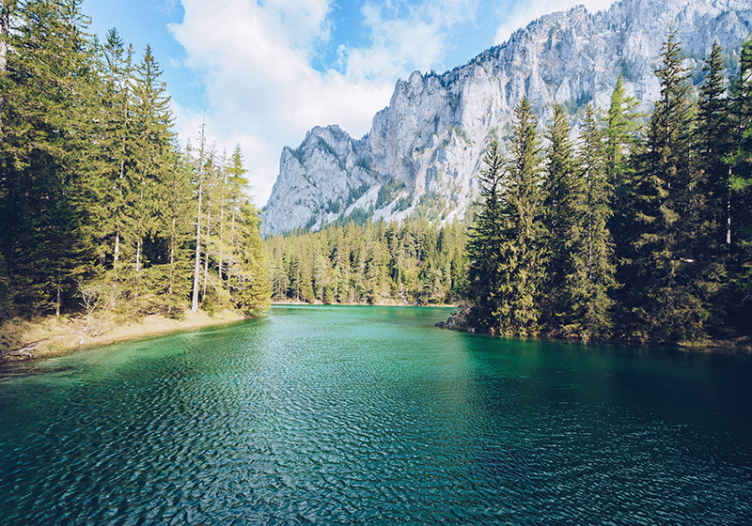 TenStickers. 높은 산과 강 산 벽화. 당신은 풍경을 좋아합니다. 이것은 가장 아름다운 풍경 중 하나이며 이제 거실에서 가질 수 있습니다. 지금 장바구니에 추가하세요!