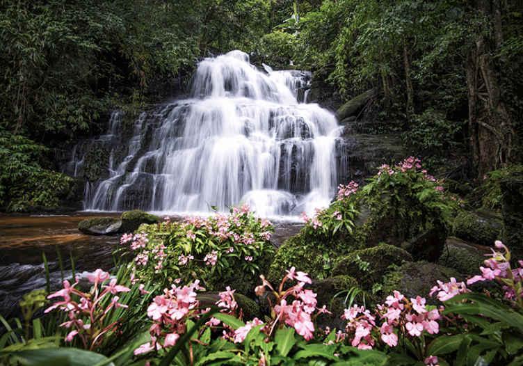 TenStickers. 폭포와 핑크 꽃 폭포 벽화. 집에 독특하고 화려한 모습을 보여주세요! 집에 와서 거실로 걸어 가면서 열대 우림을 봅니다.