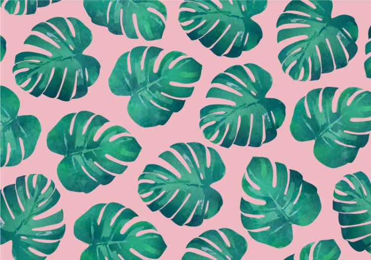 TenStickers. Růžové pozadí monstera listy nástěnná malba. Toto je ilustrace velkého, zeleného listu monstera na světle růžovém pozadí na fototapetě. Snadno se aplikuje a odstraňuje. Dodávka domů k dispozici!