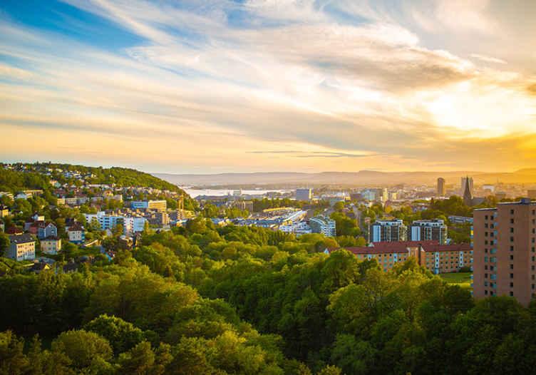 TenStickers. Oslo zgrade zidni zid. Prekrasno zeleno drveće, sjajne sunčeve zrake i male zgrade grada oslo u zidnom zidu za vašu dnevnu sobu! Dostupna kućna dostava.
