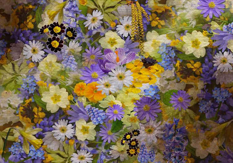 TenStickers. Fotomurali fiori Carta da parati di fiori primaverili. Questo fotomurale floreale è pieno di molti diversi tipi di fiori in bellissimi colori di verde, giallo, bianco e viola. Consegna a domicilio!