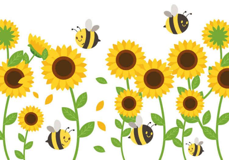 TenStickers. Stenske tapete za sončnice in čebele. Stenska poslikava ima ponazoritev več velikih sončnic s čebelami, idealnih za okrasitev otroške spalnice ali glavne spalnice na nežen način