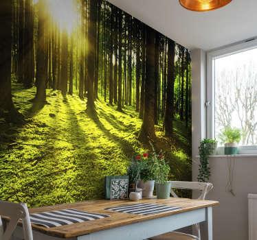 산 한가운데서 빛나는 숲의 원래 광 신병. 최고 품질의 제품, 나무와 자연으로 장식 된 사진 벽화.