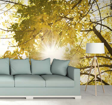 Bring the beautiful outdoors into your home with ease with this forest wall mural. Fantastically priced, superb quality, made to fit into any home