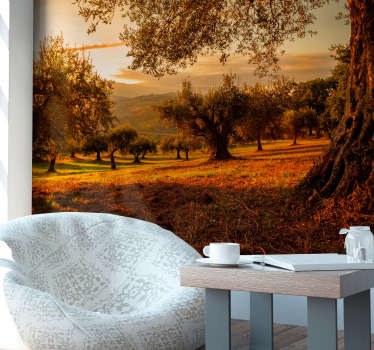 Fantastic photomural landscape for Andalusian olive groves wall with which you will decorate your house in an original and unique way.