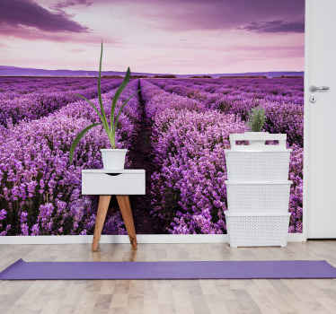 It is well known that lavender has a calming quality and why not have it on your walls like this flower photo mural with a beautiful field of lavender