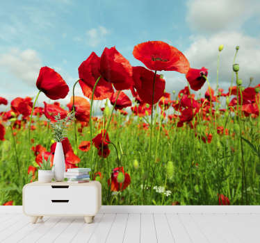 Thisfloral photo wallpapershows a huge field with beautiful poppies. The bright red will be the highlight of your home!
