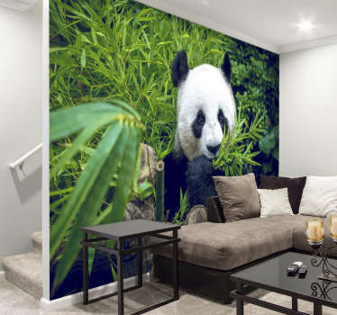 No need to put wildlife in danger and organise expensive trips, you can look at this panda from your sofa every day with this animal wall mural.