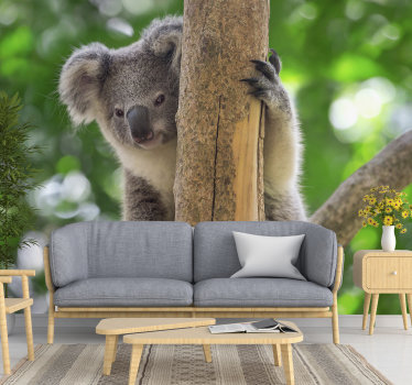 This animal wall mural showing a cute baby koala on the tree will be a perfect decoration for your living room or bedroom. Enjoy wildlife from home!