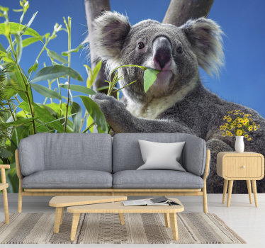 In a quick and inexpensive way, you can bring some nature to your house with this animal wall mural. Is there anything better than this cute koala?