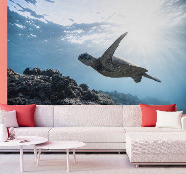 Enjoy our photo wallpaper , which depicts a soothing water turtle enjoying swimming. Choose a design which suits your wall decoration.