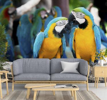 Allevare i nervosismi nella pancia guardandoli ogni volta. Sul retro ci sono diversi pappagalli raffigurati degli stessi colori.