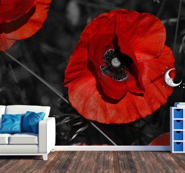 Prachtige bloemenmuurschildering van een bloesempapaver op een donkere achtergrond die leven en kleur brengt in je woonkamer of slaapkamer.