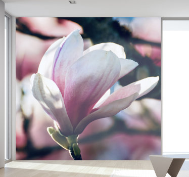 Our  spring magnolia in a flowering position wall mural. Receive your visitors with relaxation by taking them into your home!