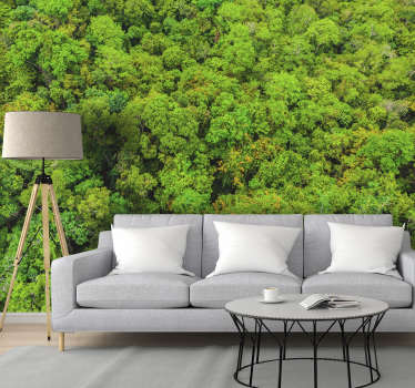 An Aerial forest photo Wall Mural that shows you a wide surface of a forest, and decorates your house with a beautiful photo wall mural of the forest.