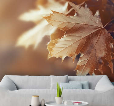 This pretty photo wallpaper shows an orange leaf in autumn with a blurry background The beautiful and bright colors will impress!