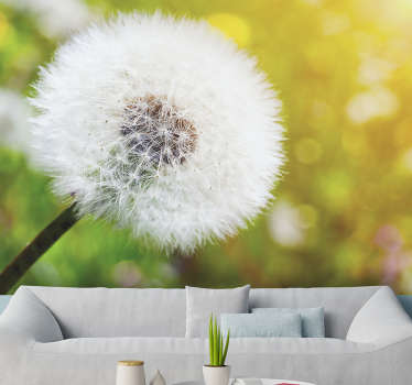 This beautiful photo wallpaper shows the fragile flower of a dandelion with the sun in the background With that you have the perfect decoration!