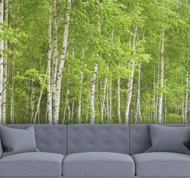 Planta algunos árboles en tu casa con este fotomural de bosque. Te sentirás tan tranquilo cada vez que mires estos abedules increíbles